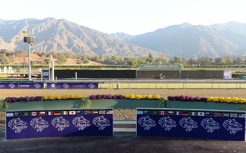 在马匹死亡事件发生后,赛车暂停在圣塔安妮塔