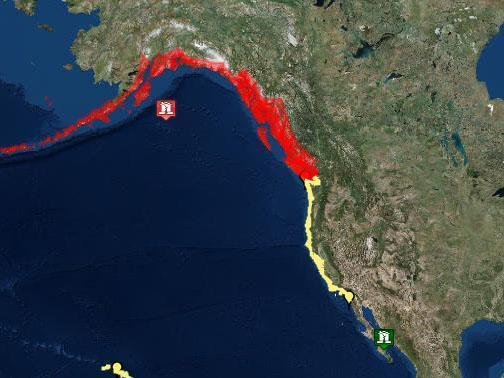 Alaska earthquake today: Tsunami warning issued for west coast of US and Canada after 7.9 tremors strike ...