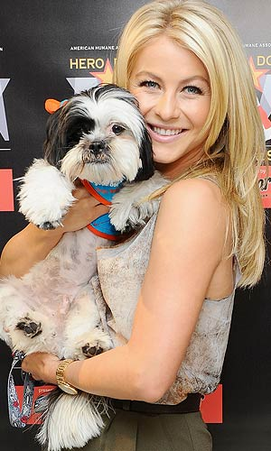 Julianne Hough snuggles up with therapy dog Gizmo to promote the Hero Dog Awards. For every vote placed on herodogawards.org, Cesar will make a donation to the American Humane Association. - Jamie McCarthy/WireImage.com
