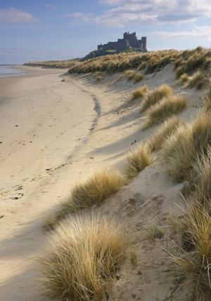 Bamburgh Castle is one of many historic sites around Northumberland (Photo by Britain on View/Visit Britain)