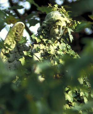 Vampire hunters once converged on London's Highgate Cemetery, where this angel watches over the graves. (Photo by Britain on View/Visit Britain)