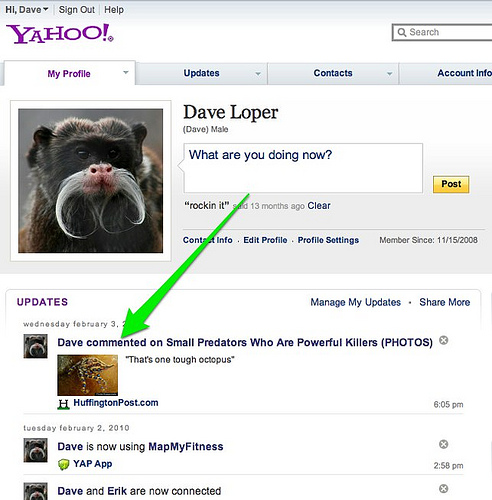screenshot of updates on a Yahoo! Profile page