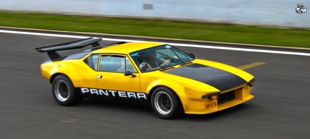 Pantera weekend: Flickr photo of the day