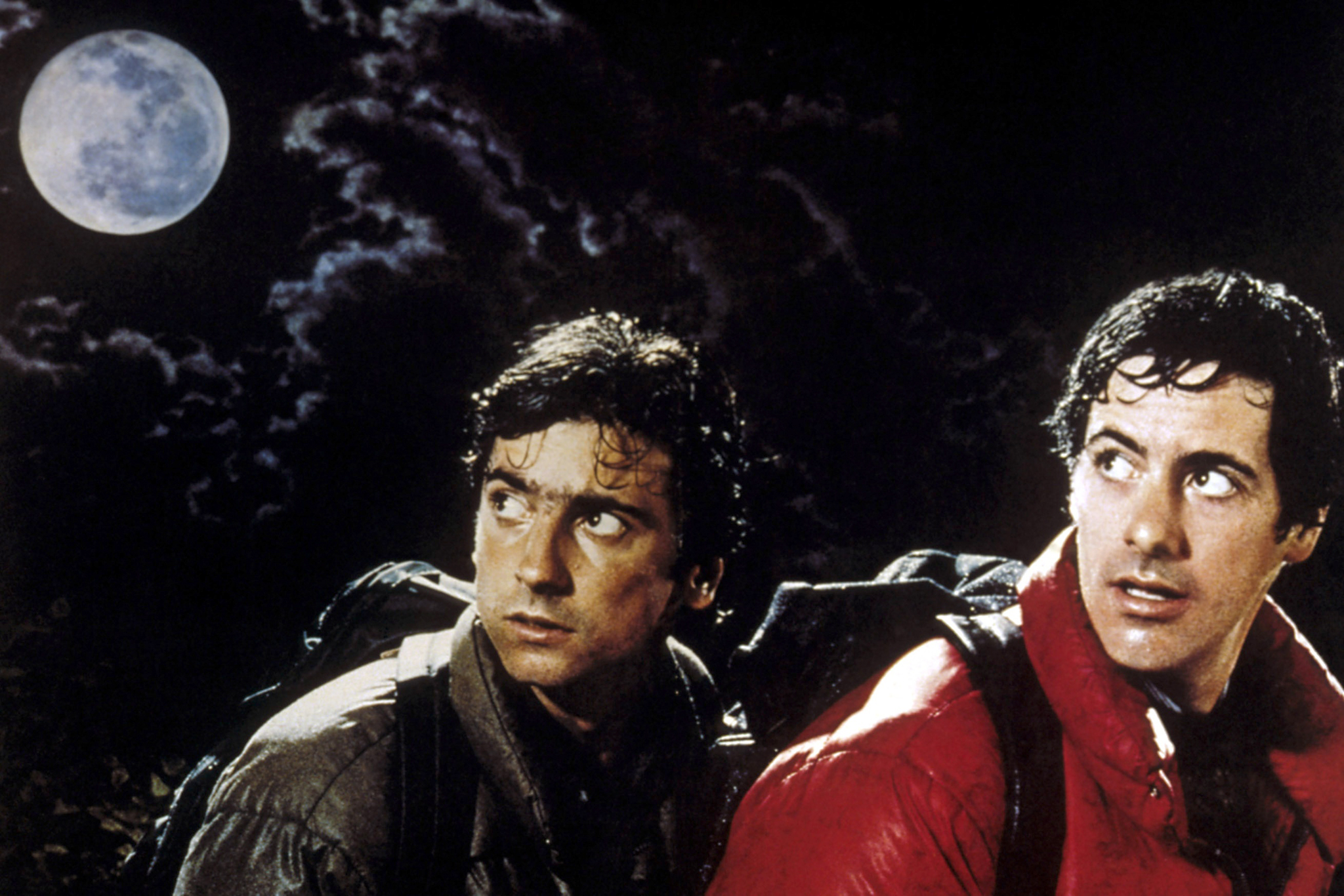 Griffin Dunne and David Naughton in 'An American Werewolf In London' (Photo: REX USA)