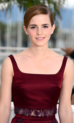 Emma Watson at Cannes (Dominique Charriau/WireImage)