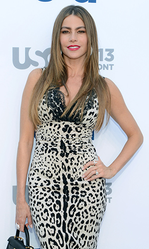 Sofia Vergara (Michael N. Todaro/WireImage)