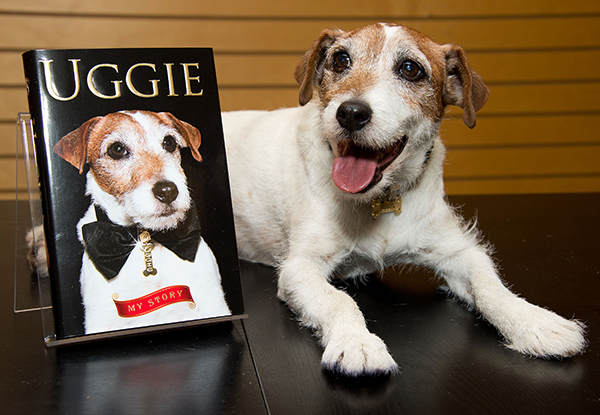 Uggie (Getty Images)