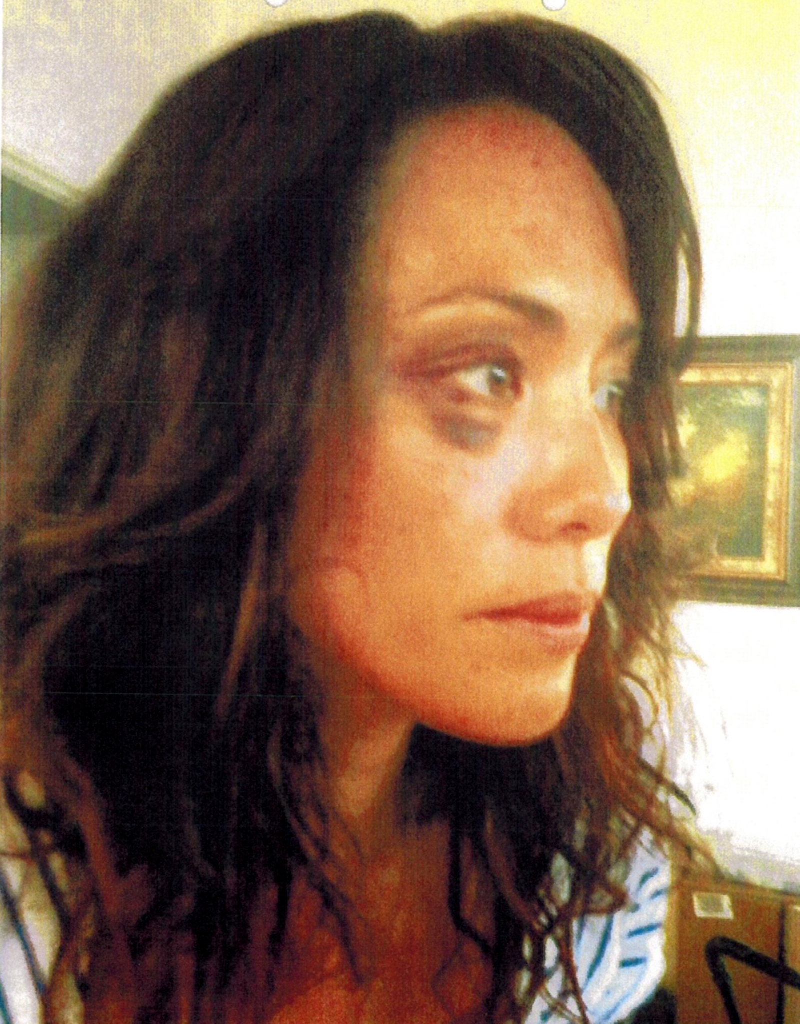 More of Michelle's photo evidence (LA Superior Court)