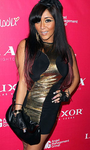 Snooki is pregnant, according to reports. (Jeff R. Bottari/Getty Images)