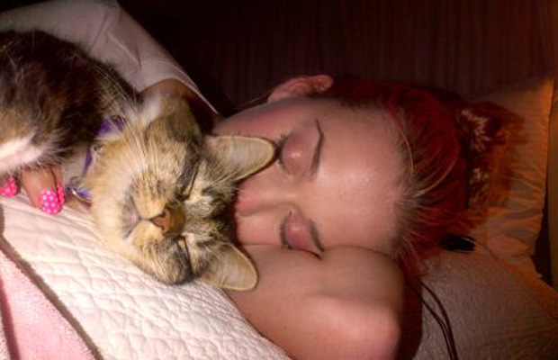 "Katy Perry (when she had pink hair) taking a ""cat nap"" with Kitty Purry. (Twitter)"