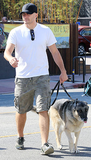 Gyllenhaal and Atticus. (Splash News)