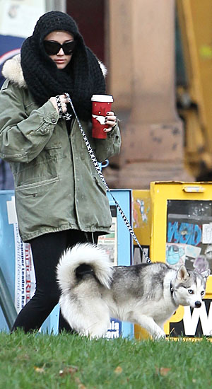 Miley Cyrus and Floyd take a walk in Philadelphia. (INFDaily.com)