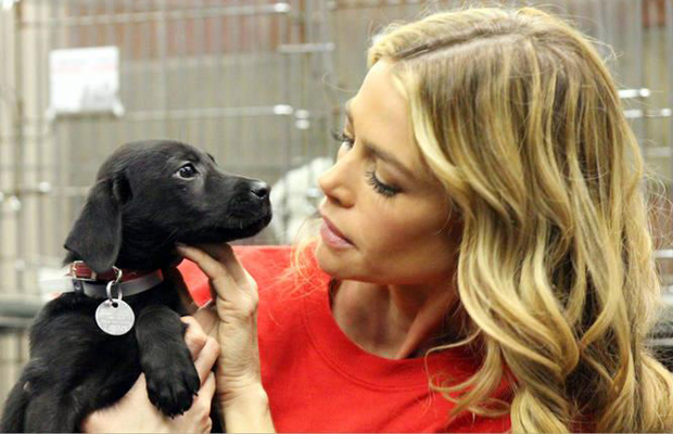 Denise Richards and her new addition, Tara. (North Shore Animal League)