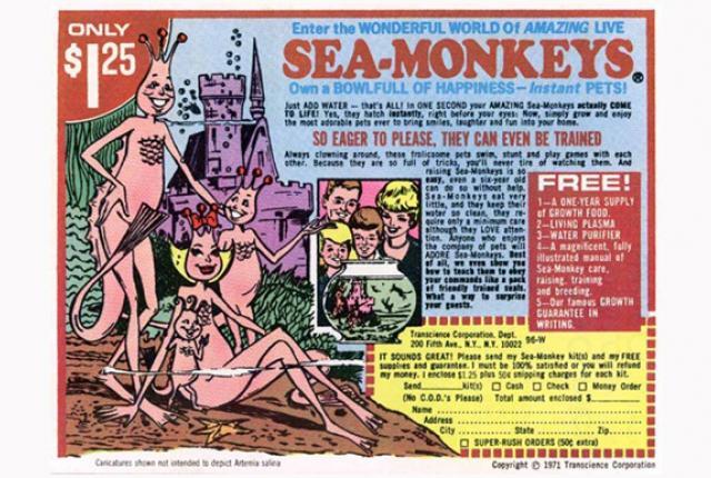 Watch laser-guided Sea-Monkeys stir up a watery vortex