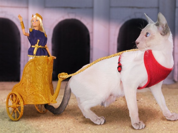 Barbie Rides To Battle on 3D-Printed, Cat-Pulled Chariot