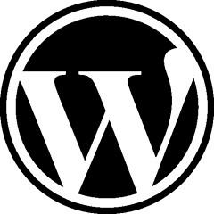 Building a custom WordPress site? These tools will reduce your pain