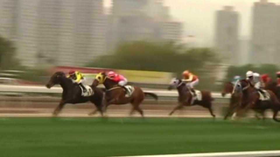 horse racing declarations