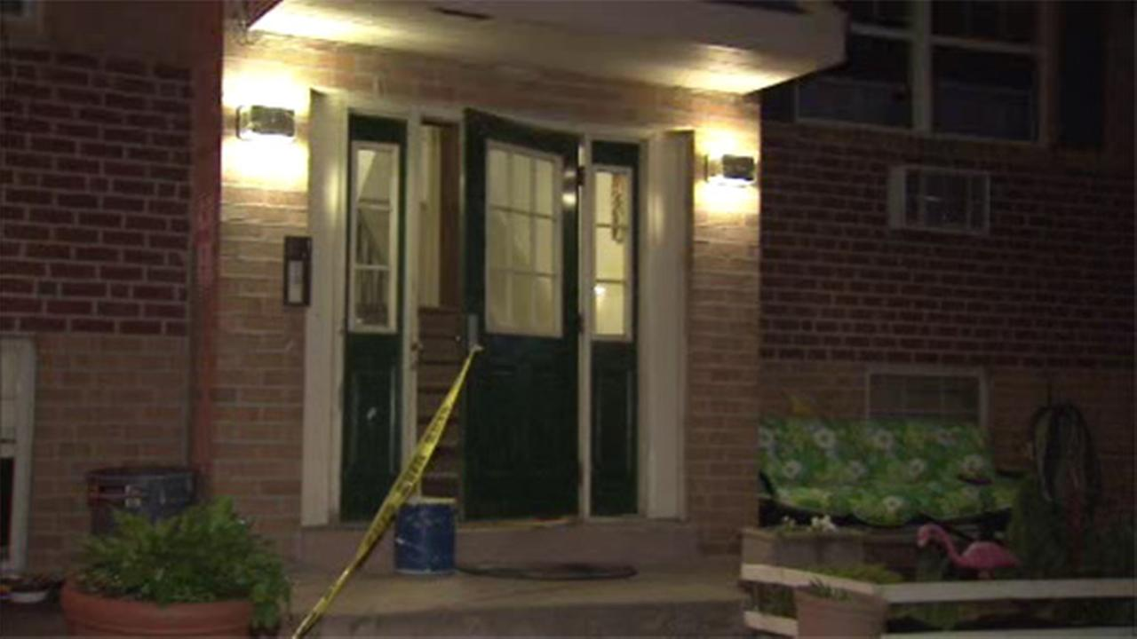 Police search for masked men in Roxborough break-in