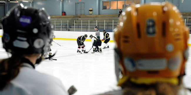Enrolling Daughter Or Son In Minor Hockey Now More Expensive Than Putting Child In Show Jumping - Study