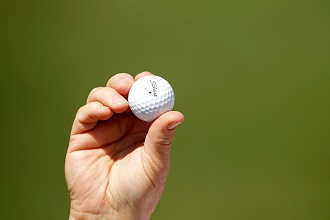 The lucky albatross. (Getty Images)