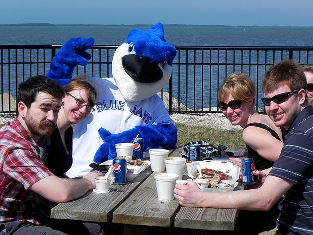 DJ the Blue Jay made the most of his escape from Toronto's spring ballpark. (Big League Stew)