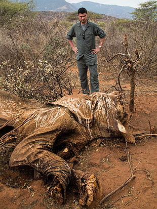 Yao called seeing a dead, poached elephant 'a sight I will not soon forget.' (AP)