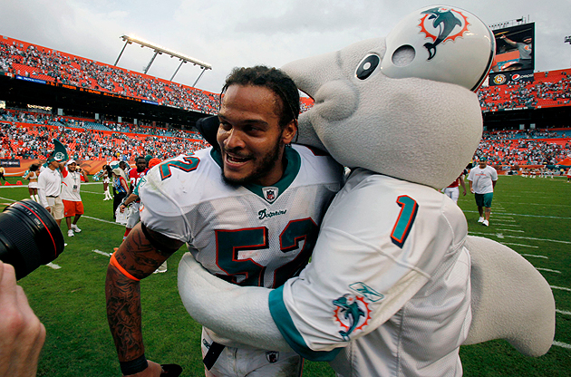 Miami, Viced: Dolphins have become a public disgrace