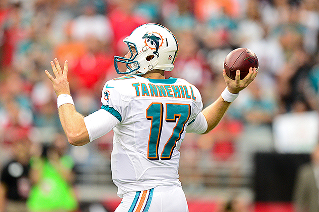 Ryan Tannehill needs more talent around him (USA Today Sports Images)