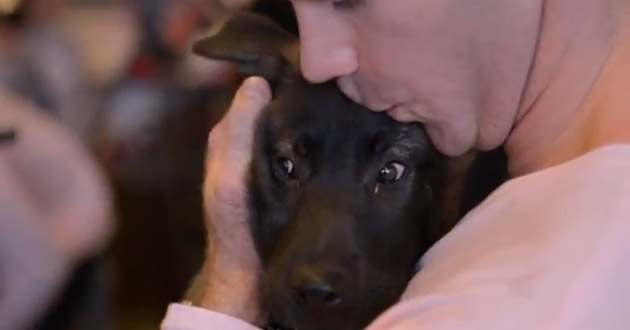 David Backes kisses all the puppies (Video)