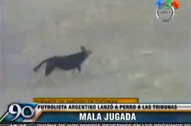 Argentinean player sent off for throwing dog from field by its neck