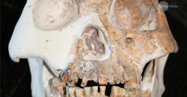 The ancient humans lived in caves and ate venison 11,500 years ago