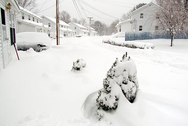 Digging out from Nemo: Residents' stories from the storm