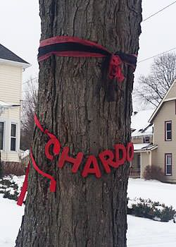 Red ribbon hangs on a tree in Chardon, Ohio.