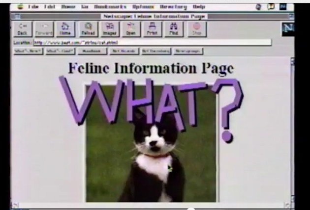 The future of the Internet, as predicted in 1995 (YouTube)
