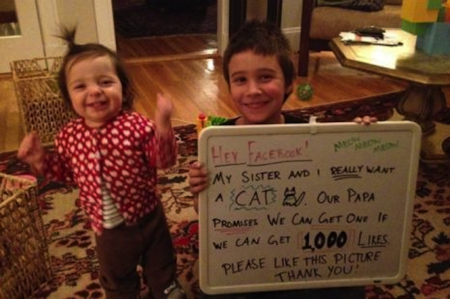 Evelyn and Remi Urbano's successful pitch for a new cat (Facebook)