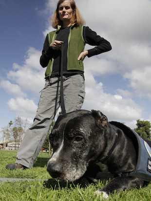 Would you buy your dog a pair of testicular implants? (AP/Richard Vogel)