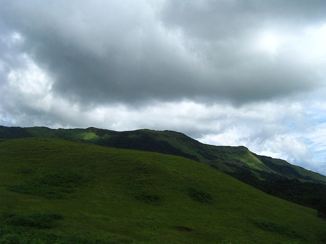 chikmagalur shades of velvet green