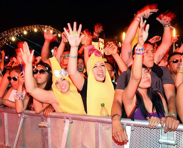 Banana People (Ethan Miller/Getty Images)