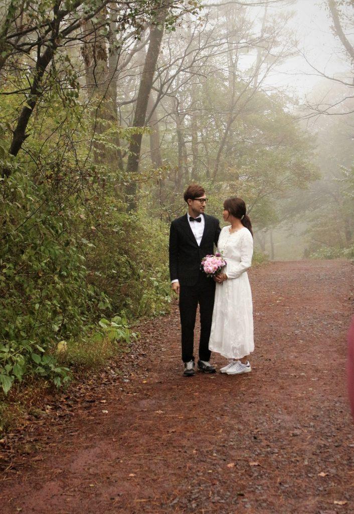 濟州島 雨中朦朧的四連伊林蔭道,也是拍攝婚紗的聖地