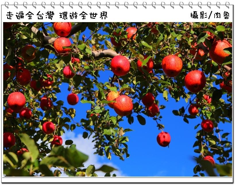 nEO_IMG_74.jpg