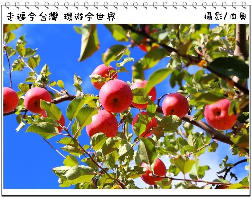 nEO_IMG_80.jpg