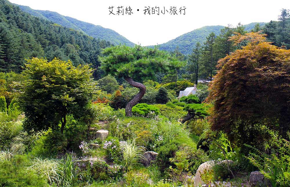 IMG_0107-s.jpg