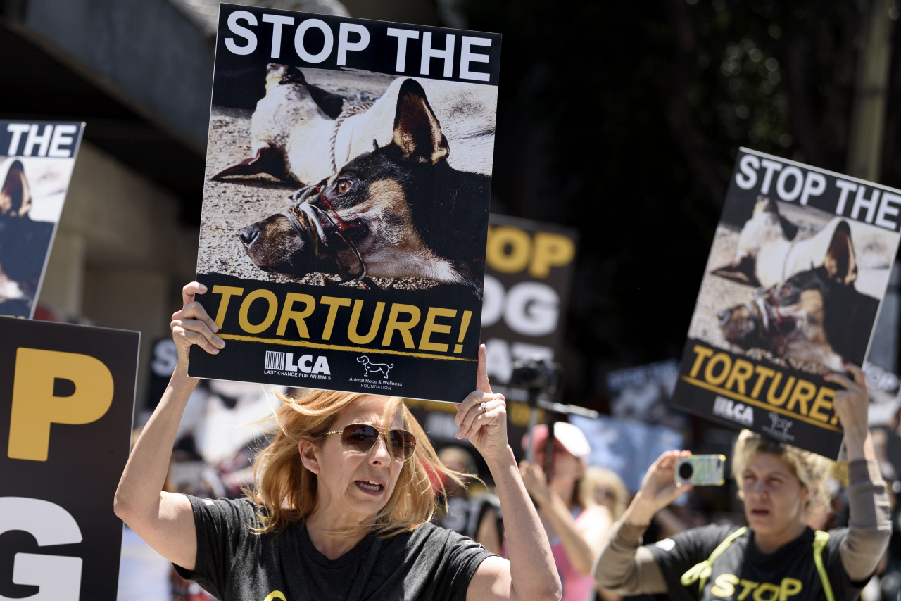 Lawmakers target Asia's 'abhorrent' dog-meat industry