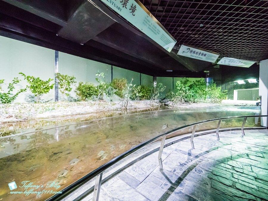 [屏東景點]屏東國立海洋生物博物館全攻略/適合親子旅遊的屏東親子景點/夜宿海生館
