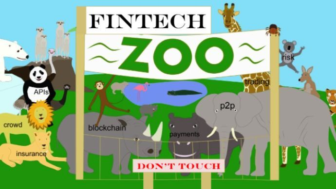 welcome to the fintech zoo