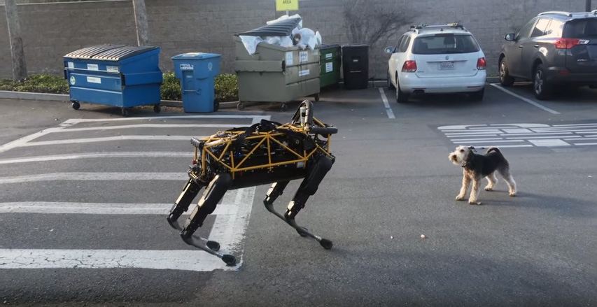 Watch Google's robot dog play with a real dog
