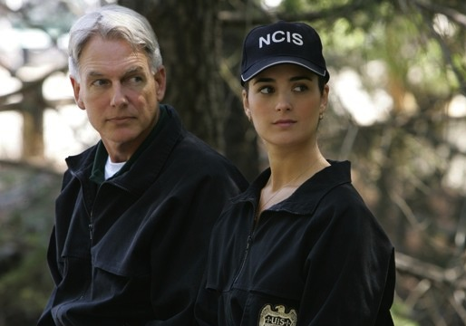 CBS Renews NCIS For Season 11 as Mark Harmon Inks New Deal  But What About Cote de Pablo?