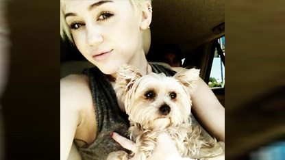 Miley Cyrus 'Broken' Over Dog's Sudden Death