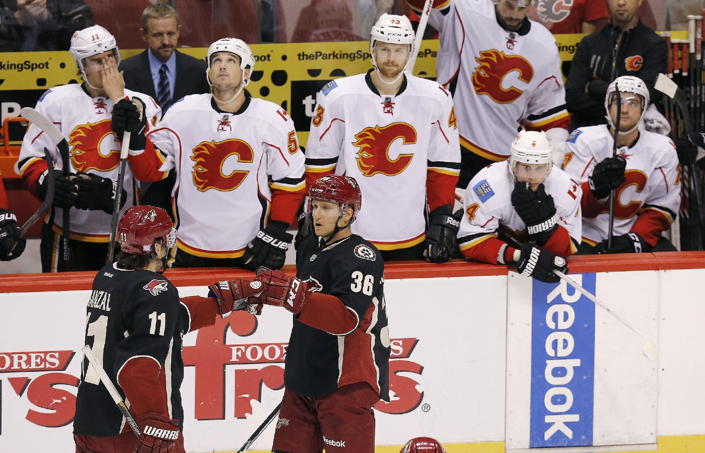 Phoenix Coyotes' Rob Klinkhammer (36) celebrates his empty net goal with teammate Martin Hanzal (11), of the Czech Republic, as Calgary players, from left to right, Mikael Backlund, of Sweden, Shane O'Brien, Chris Breen, Kris Russell, and T.J. Brodie all look on from the bench during the third period of an NHL hockey game on Tuesday Oct. 22, 2013, in Glendale, Ariz.  The Coyotes defeated the Flames 4-2