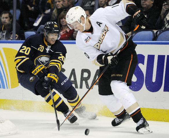 Buffalo Sabres defenseman Henrik Tallinder (20), of Sweden, knocks the puck away from Anaheim Ducks right winger Corey Perry (10) during the second period of an NHL hockey game in Buffalo, N.Y., Saturday, Nov. 2, 2013. Anaheim won 6-3
